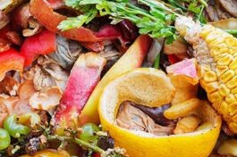 Anaerobic Digestion and food waste recycling